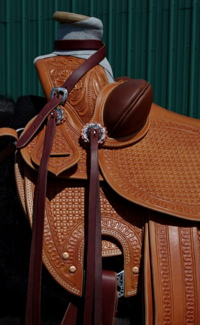Dan's saddle 08_resize